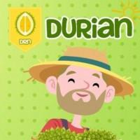 DurianNetwork